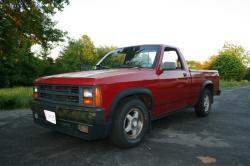 beesty1 1989 Dodge Dakota Regular Cab & Chassis