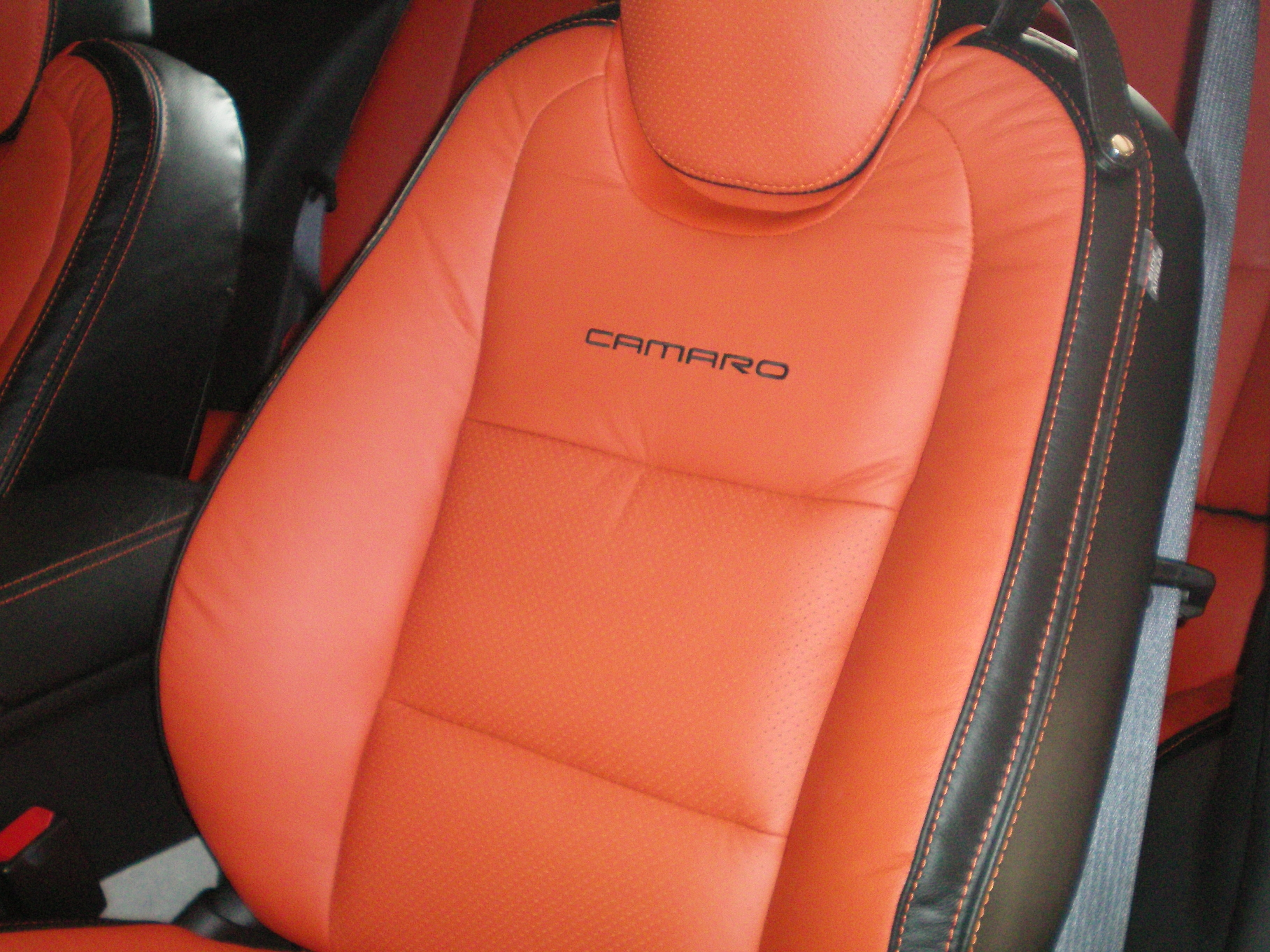Another UpholsteryMan 2010 Chevrolet Camaro post... - 14518157