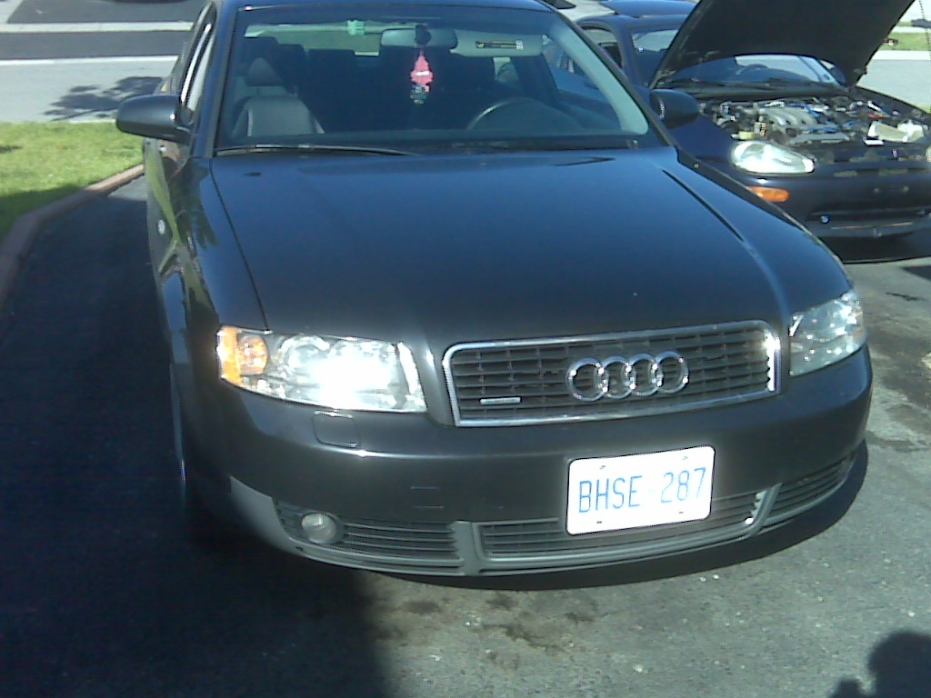 Another whitete 2002 Audi A4 post... - 14522439