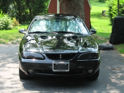 ashesofempiress 1998 Ford Mustang
