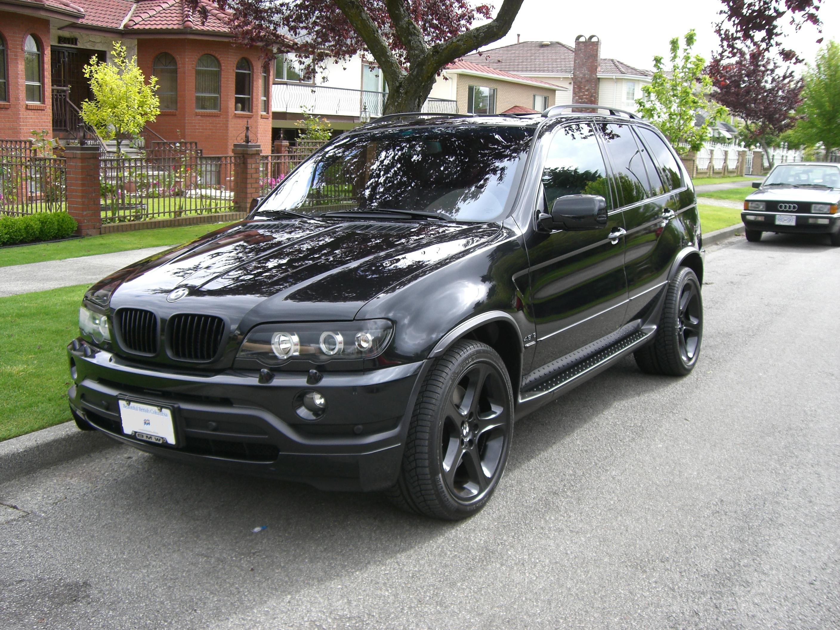 rexshop 2003 bmw sport utility 4d specs photos modification info at cardomain. Black Bedroom Furniture Sets. Home Design Ideas