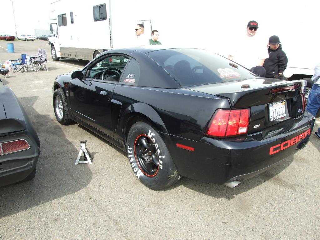 85FourEyedGT 2003 Ford Mustang