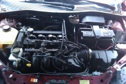 projectdsm1s 2007 Ford Focus