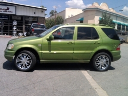 lashaunromans 1999 Mercedes-Benz ML-Class