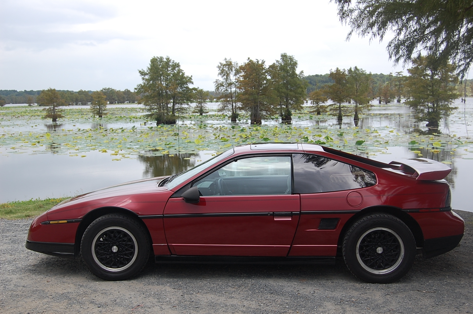 Another The AmmO ChicK 1988 Pontiac Fiero post... - 14672541