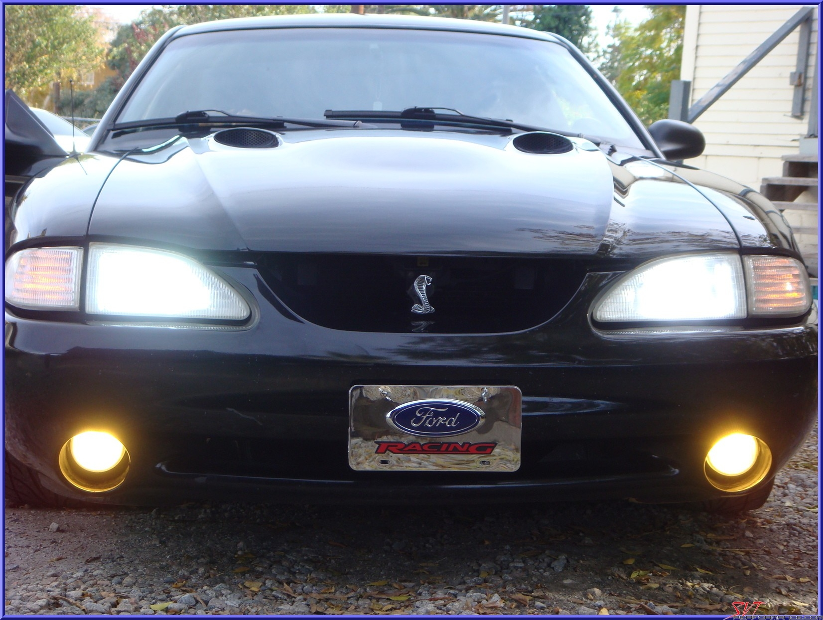 Another 909cobra 1997 Ford Mustang post... - 14675924