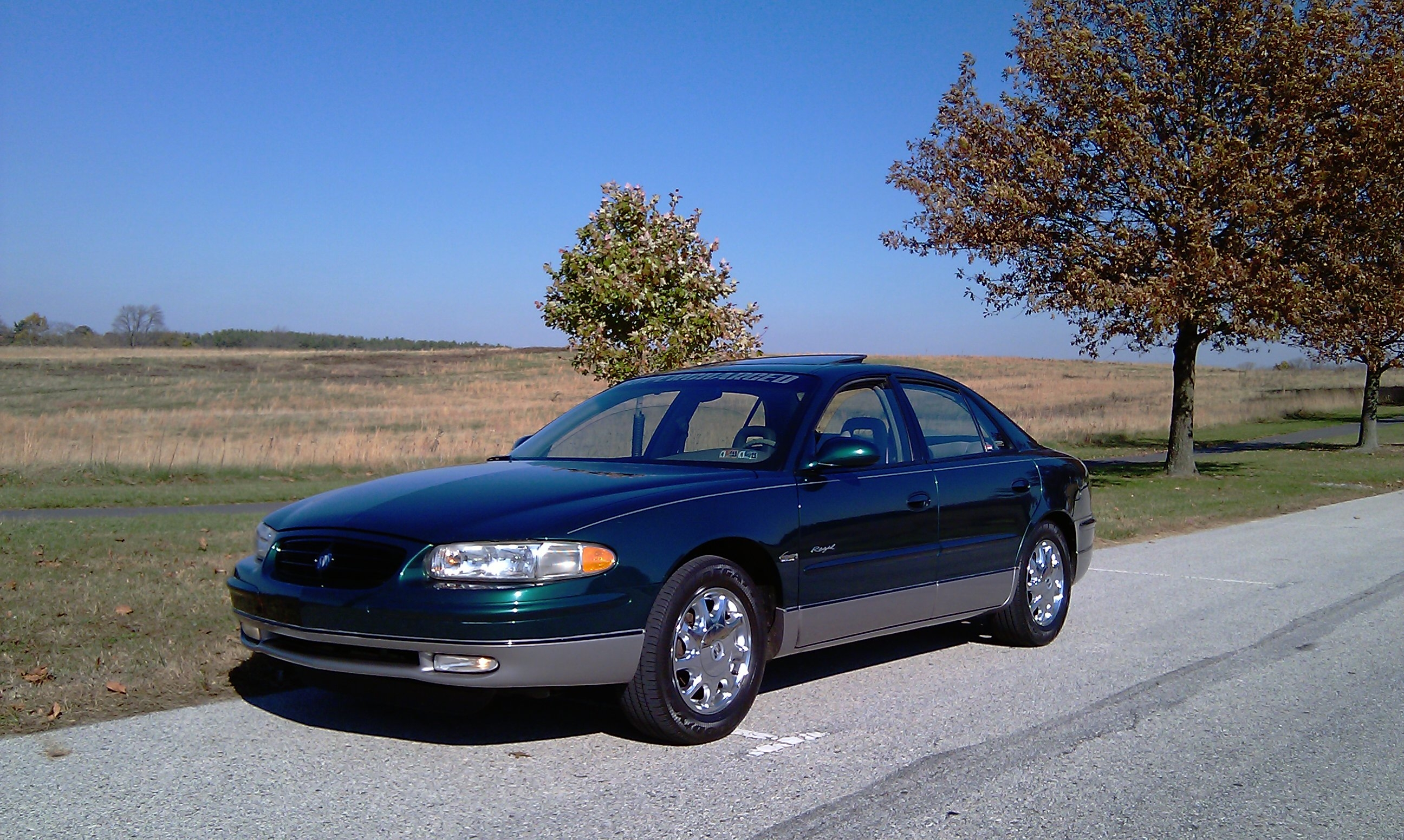 Another Chrisolds 1998 Buick Regal post... - 14681023