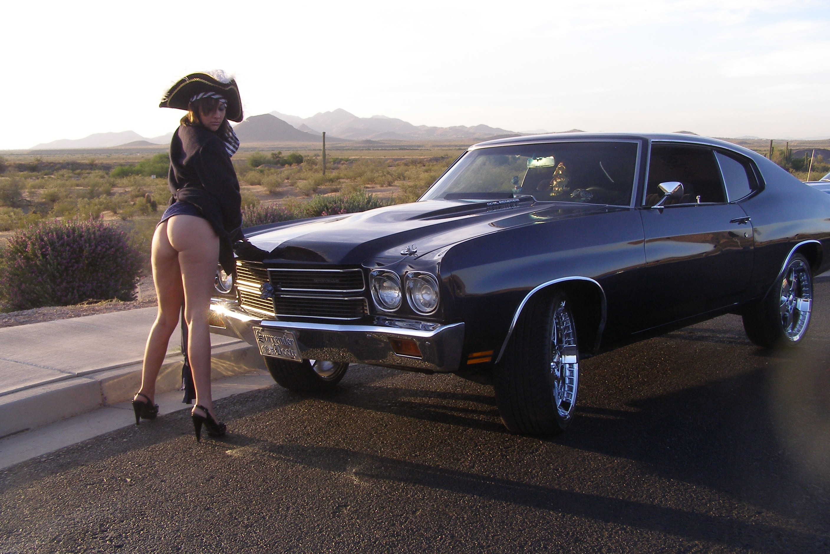 Ronrico 1970 chevrolet chevelle specs photos modification info at cardomain