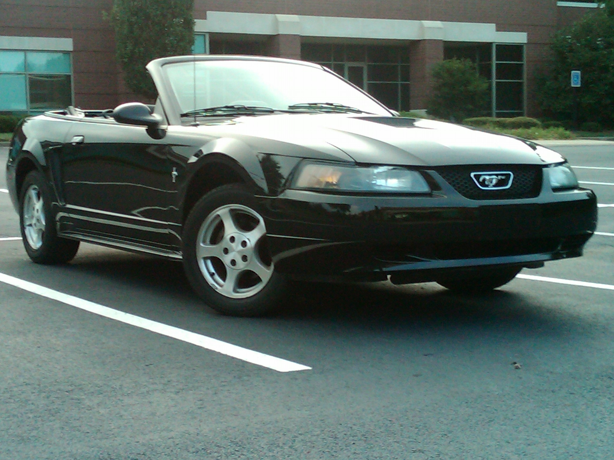 Another ZGadson 2002 Ford Mustang post... - 14715669