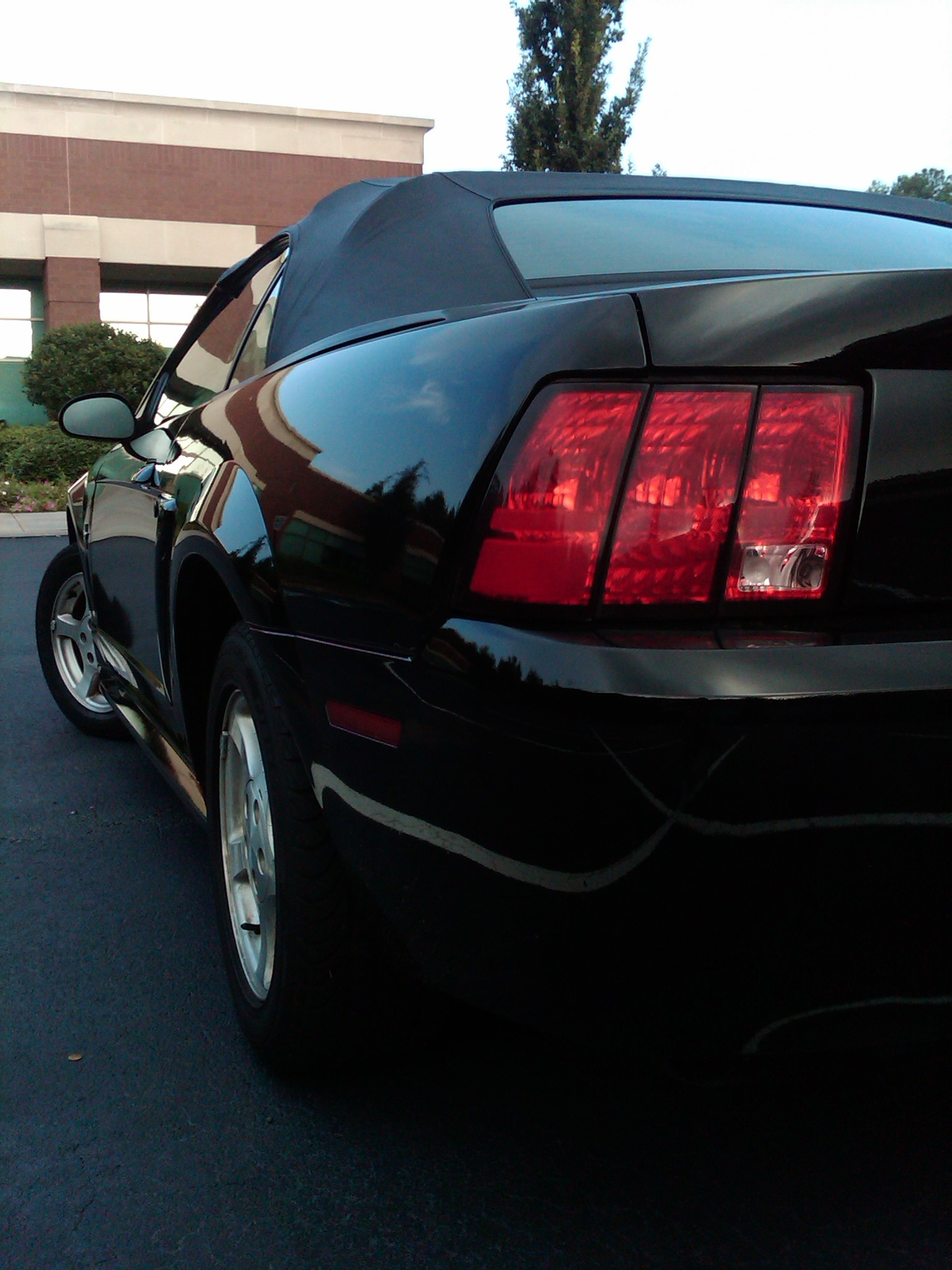 Another ZGadson 2002 Ford Mustang post... - 14715670