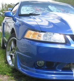 her-ponys 2000 Ford Mustang