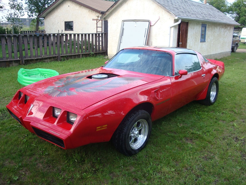 Another SPTurbo 1981 Pontiac Trans Am post... - 14721294