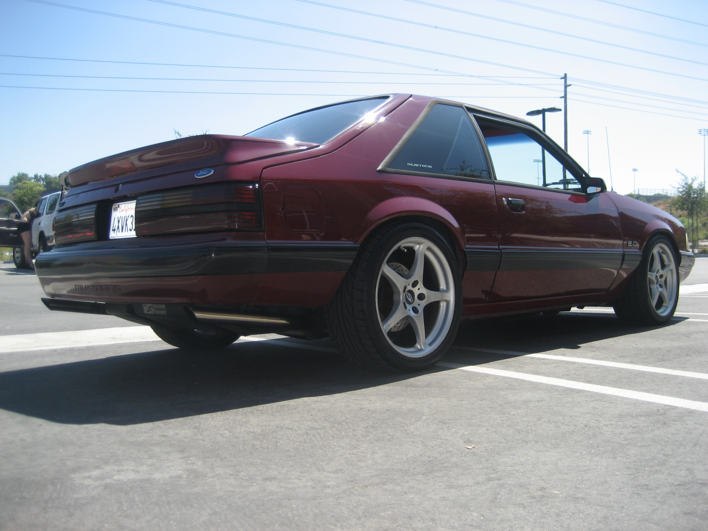 Another martinez331 1989 Ford Mustang post... - 14738138