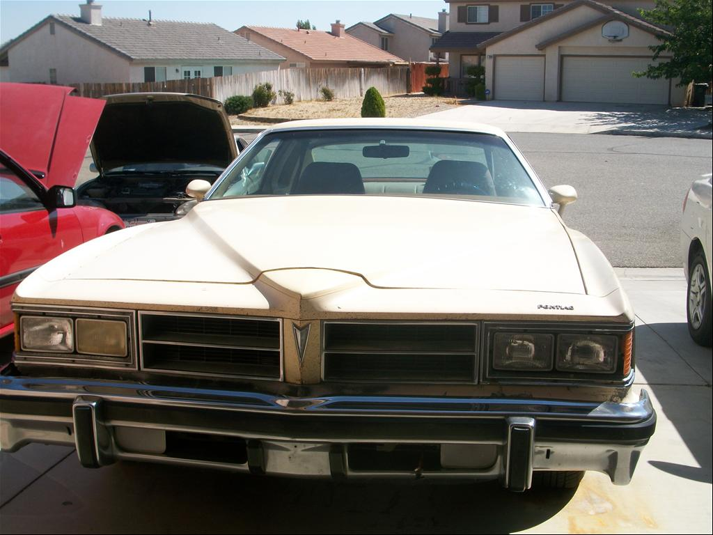 louis820's 1976 Pontiac LeMans