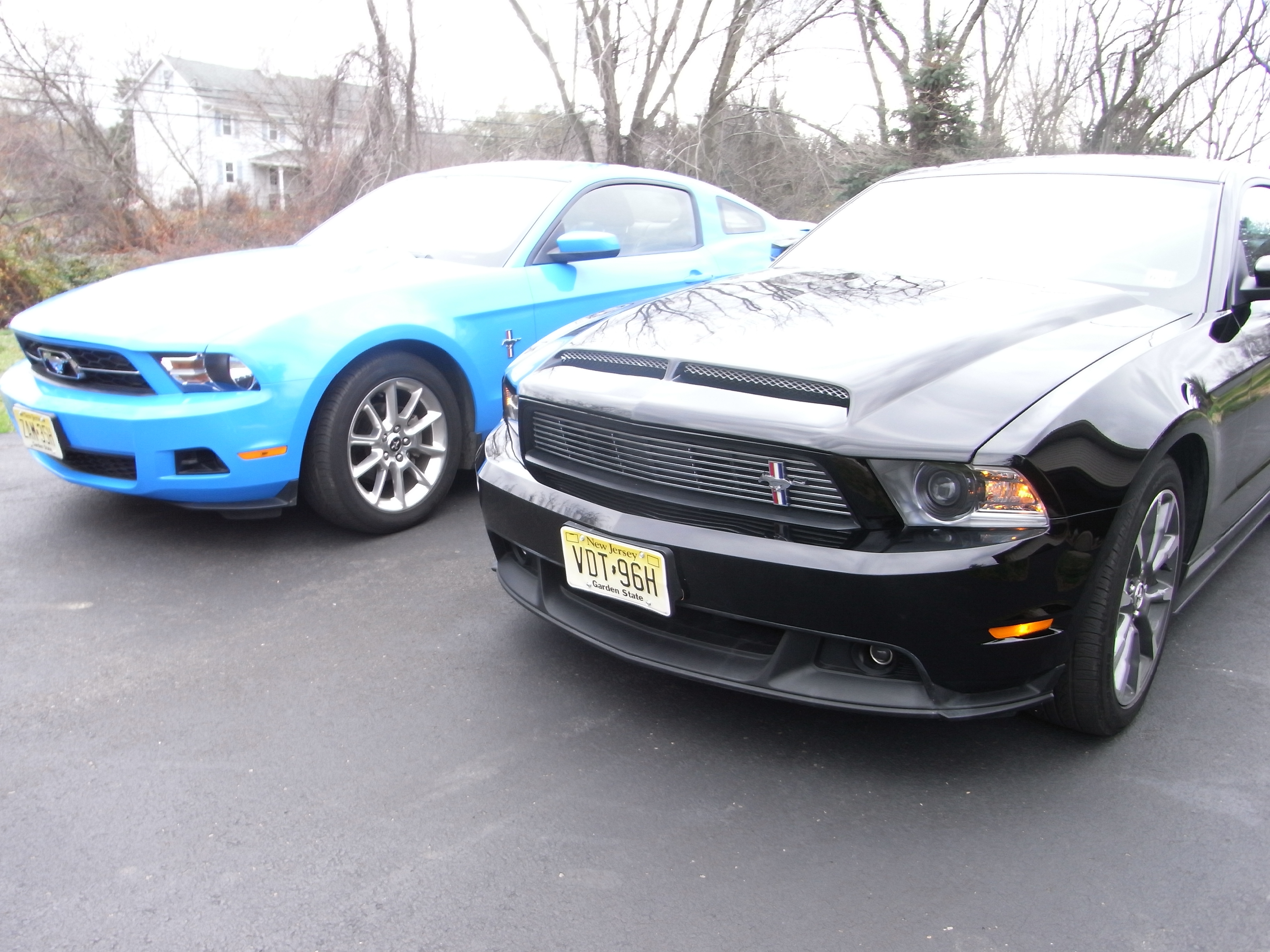 tferrigno 2011 Ford Mustang 14753198