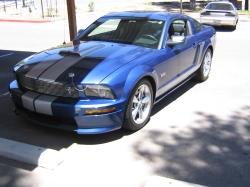 flagstangs 2008 Ford Mustang