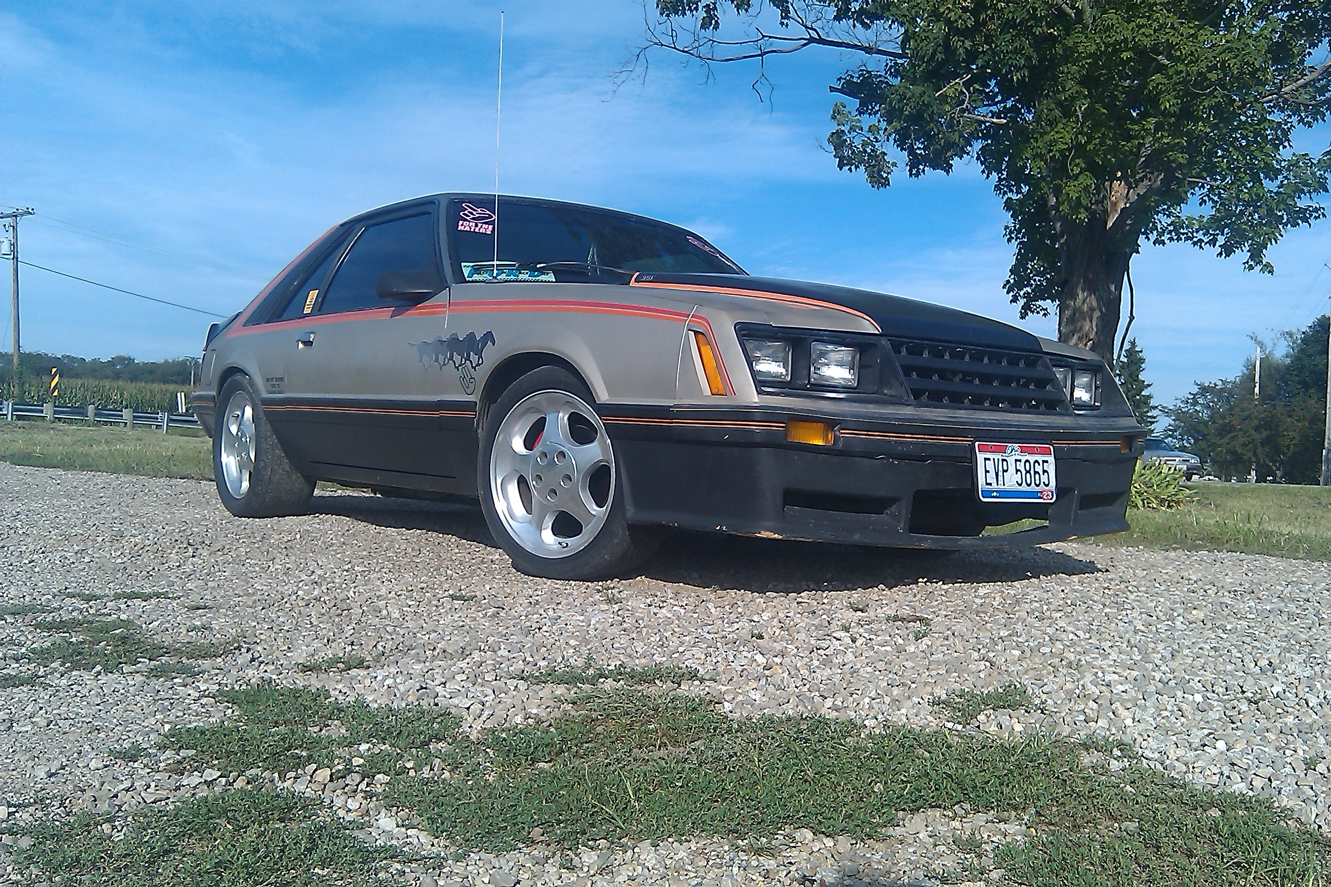 Another seifertjoey 1979 Ford Mustang post... - 14778347