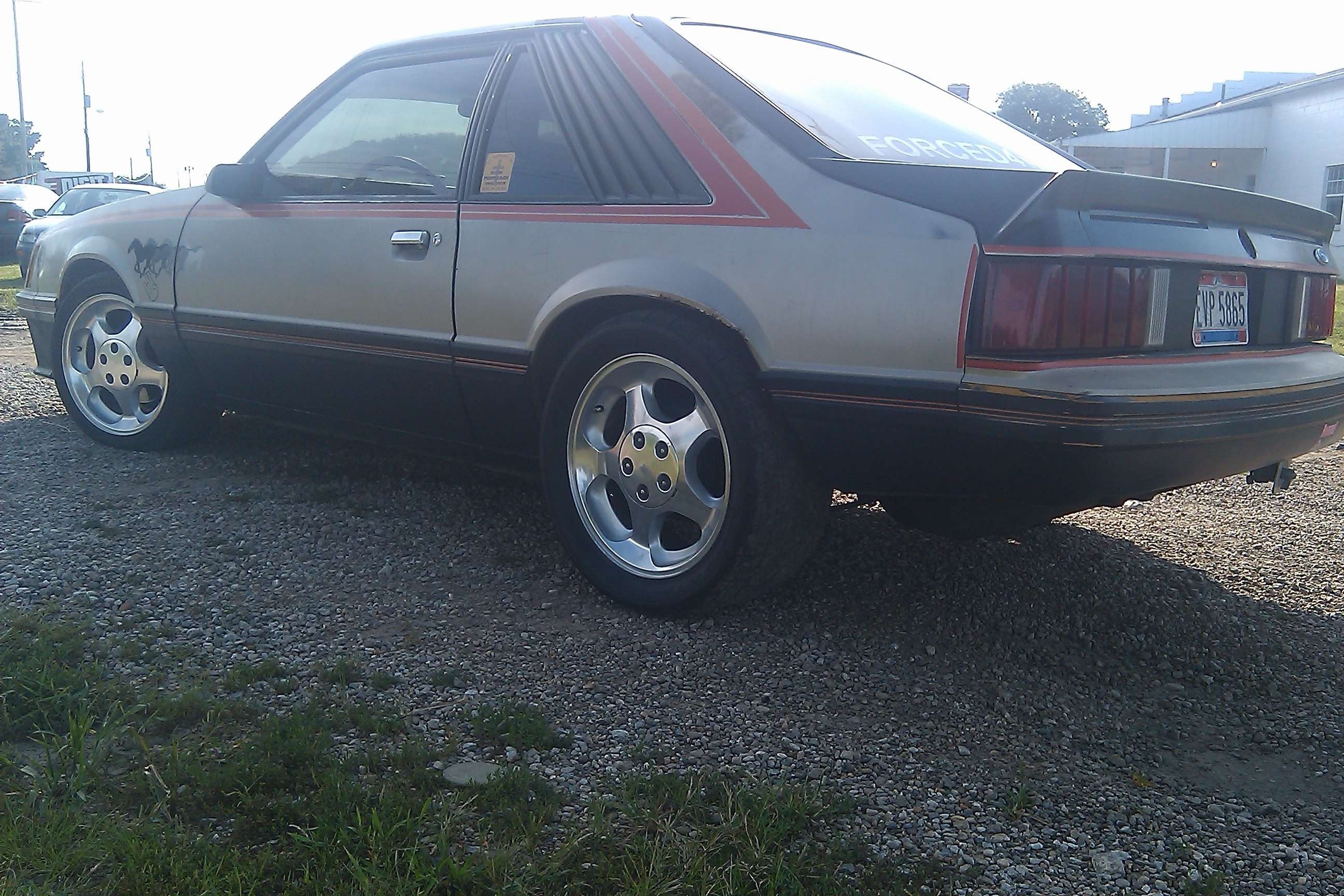 Another seifertjoey 1979 Ford Mustang post... - 14778349