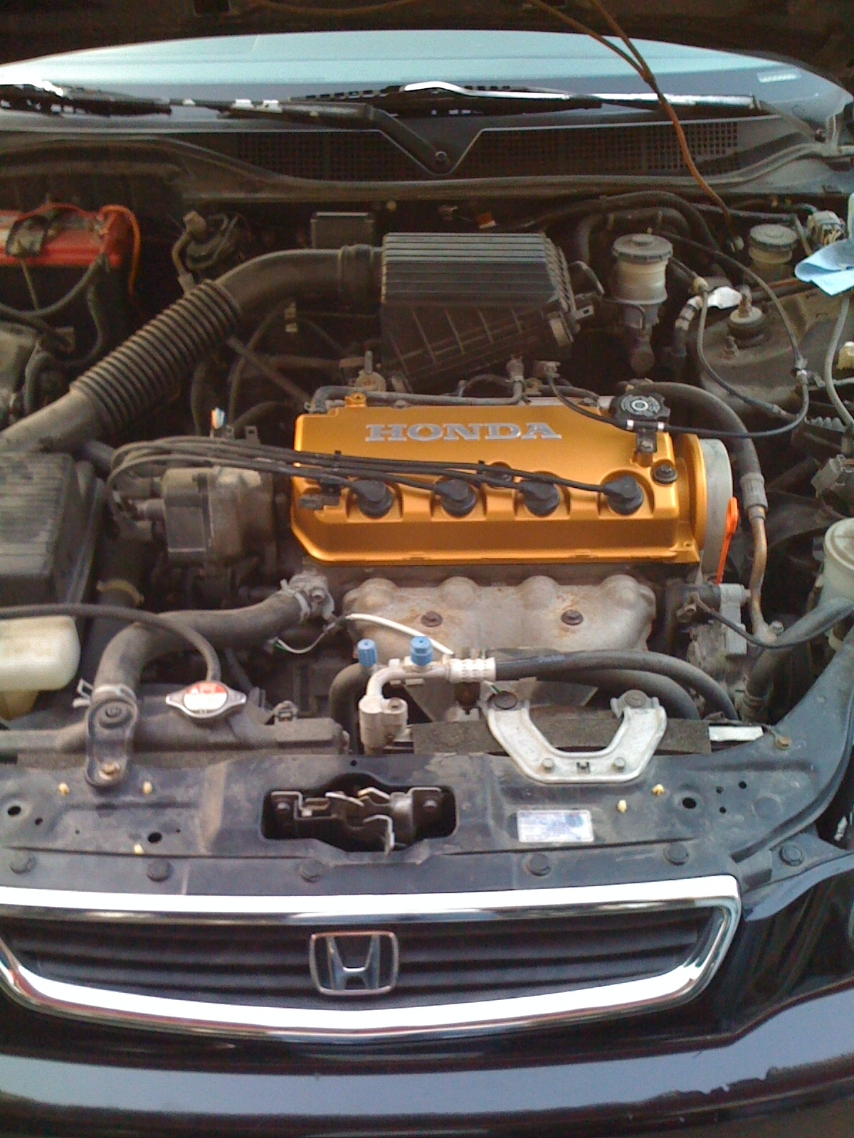 turbo_dreams91 1998 Honda Civic 8601111