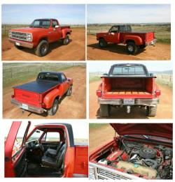dynamodave's 1979 Dodge Power Wagon