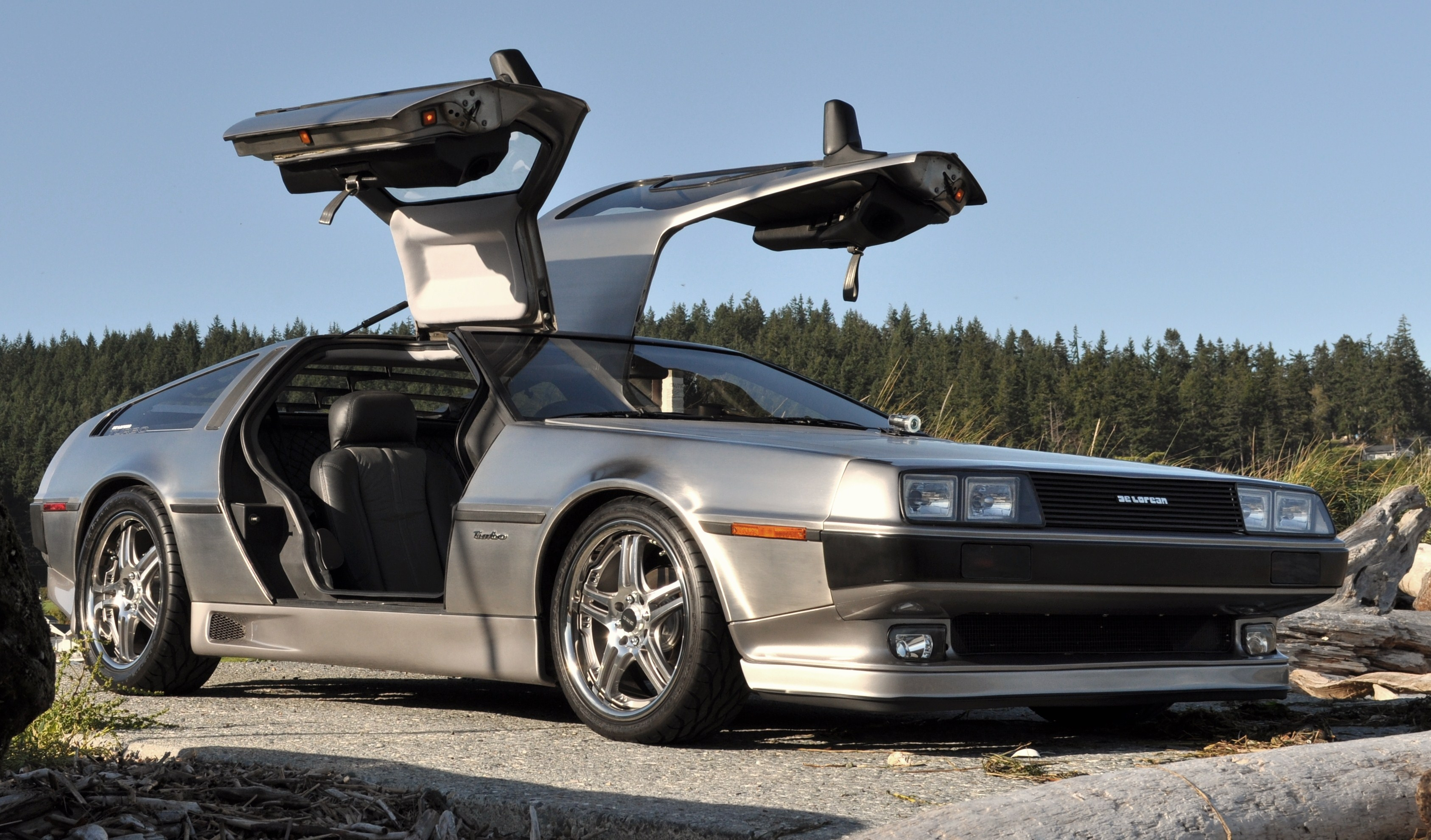 Delorean07 1981 DeLorean DMC-12 14812474
