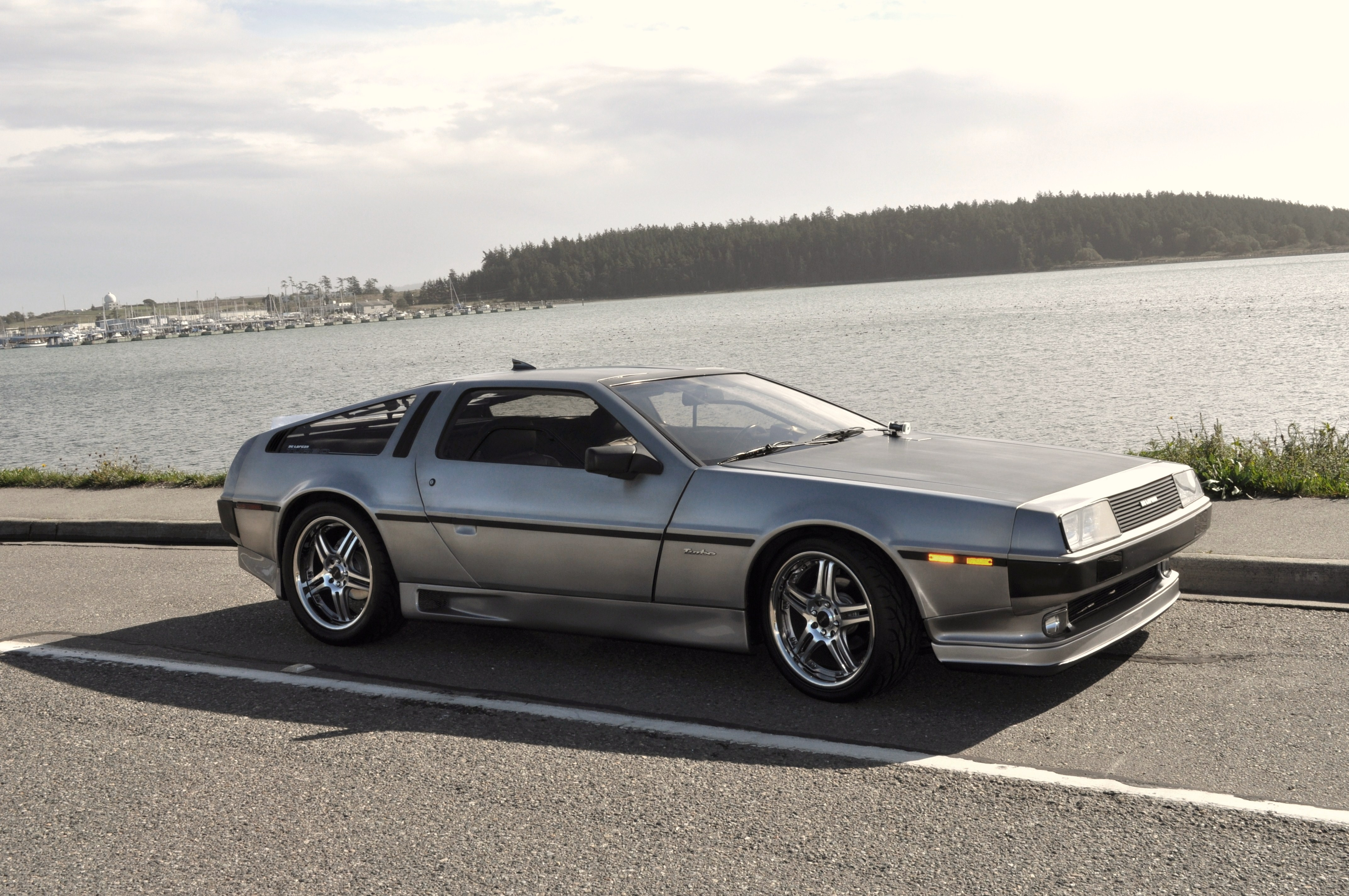 Delorean07 1981 DeLorean DMC-12 14812480