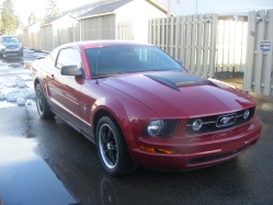 mdescaries 2008 Ford Mustang