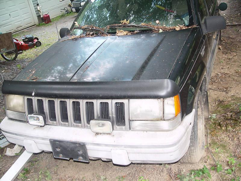 Another Jeepgrrl 1993 Jeep Grand Cherokee post... - 14818994