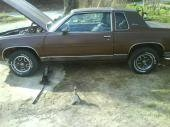 cutdogboi 1984 Oldsmobile Cutlass Supreme 14823783