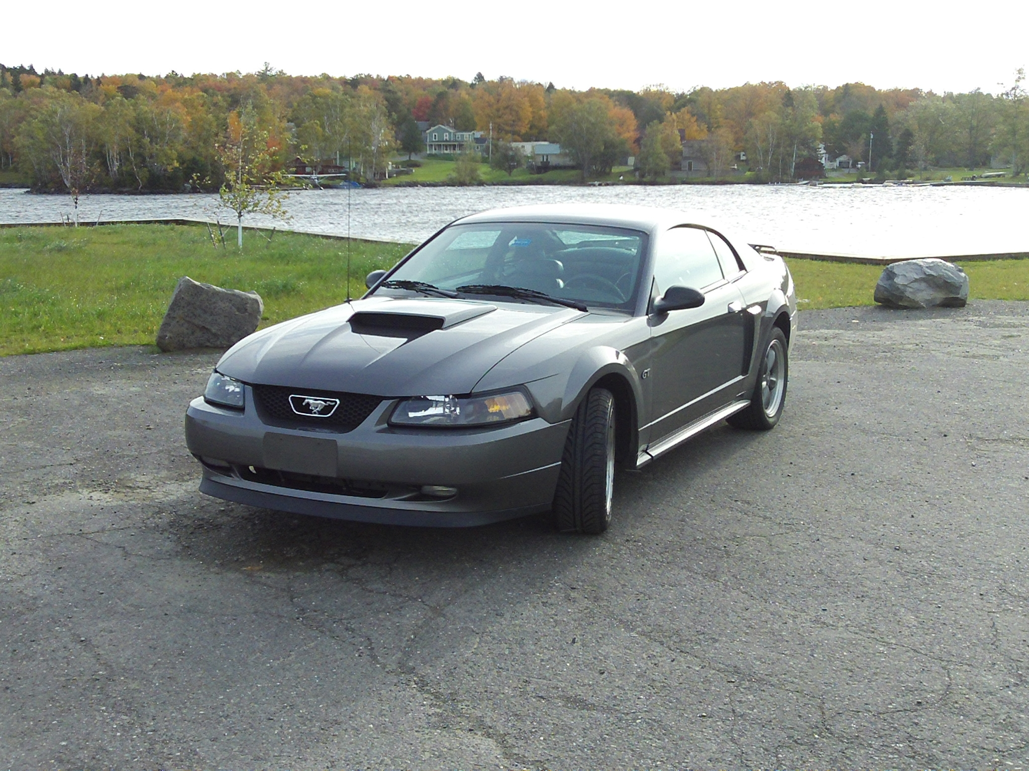 msstang47's 2003 Ford Mustang Mach 1 Premium Coupe 2D in norwood,