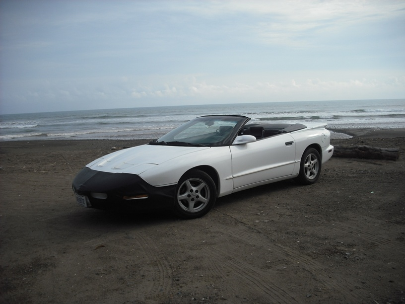 Another rodolfo23 1996 Pontiac Firebird post... - 14853090