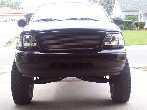Pennywise310 2002 Ford F150 Super Cab 14858390