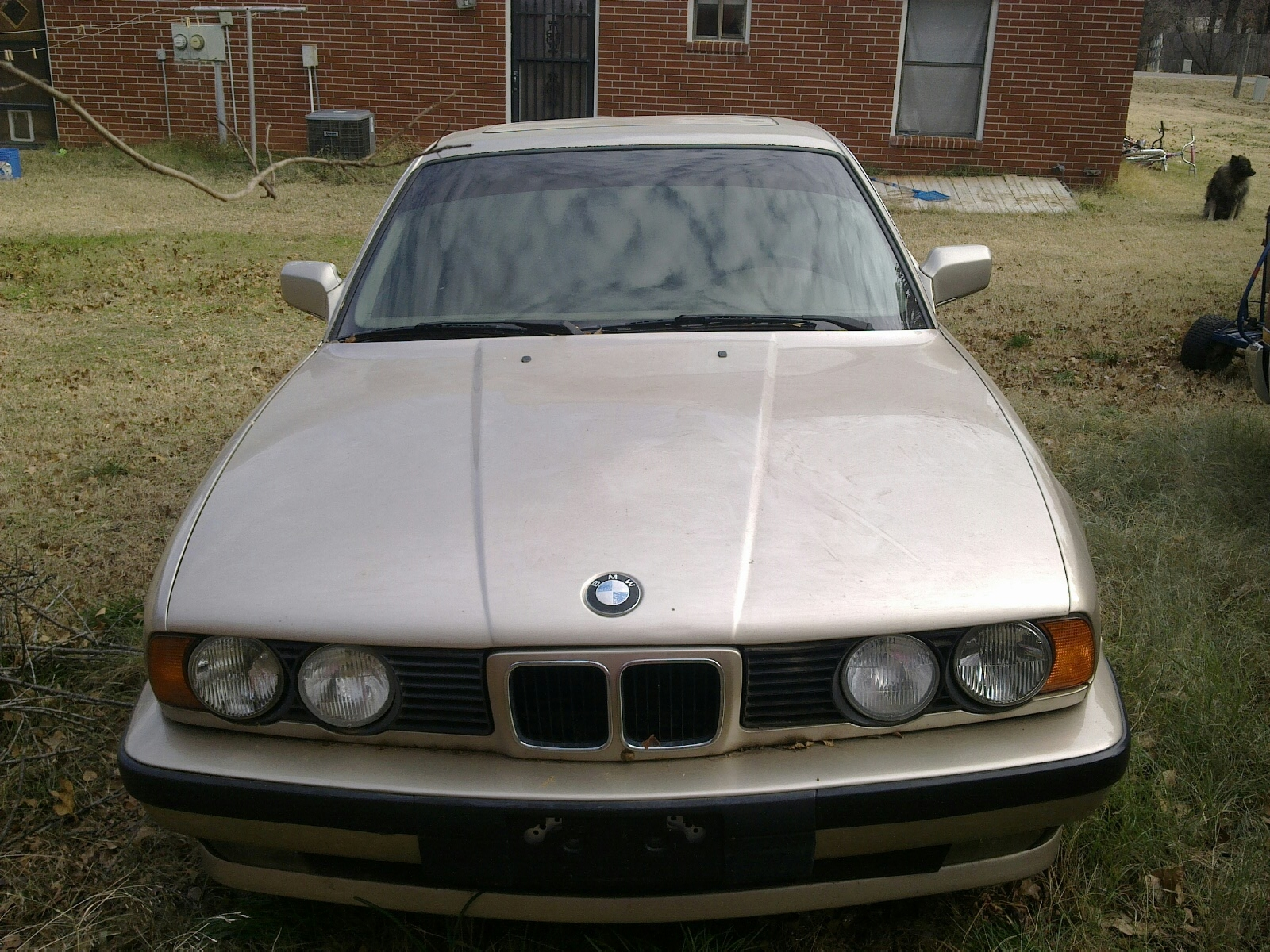 Another princessisout 1992 BMW 5 Series post... - 14884260
