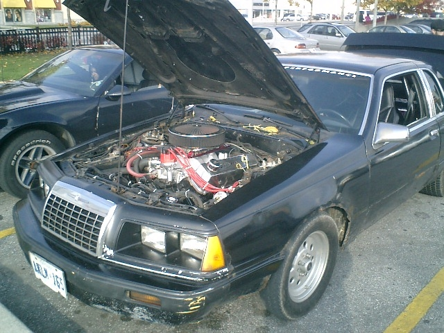 Another chirpalot 1985 Ford Thunderbird post... - 17318847