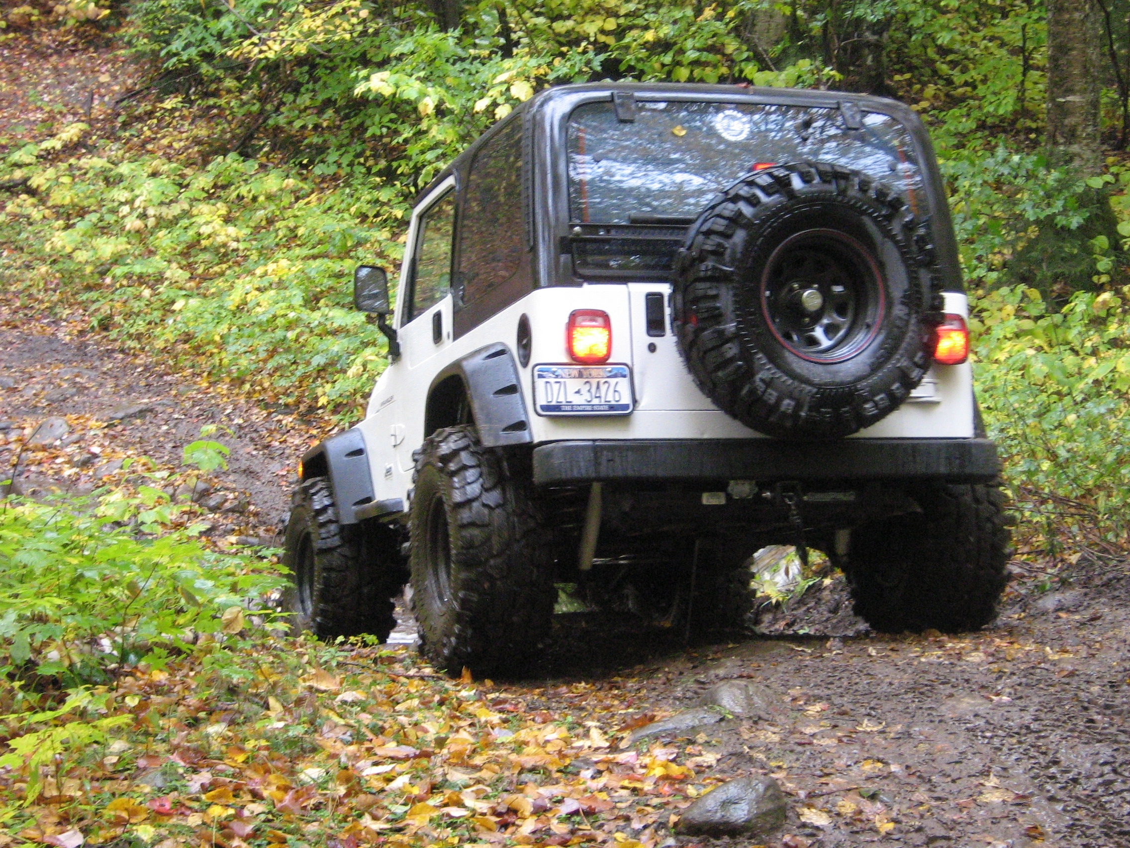 Another 85gmcgirl 2002 Jeep Wrangler post... - 14922967