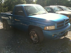 TDPalmers 1999 Dodge Ram 1500 Regular Cab