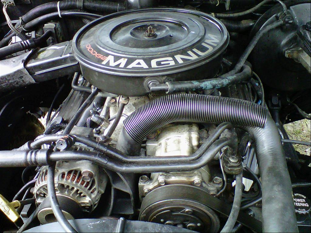 Large on 1995 Dodge Dakota V8