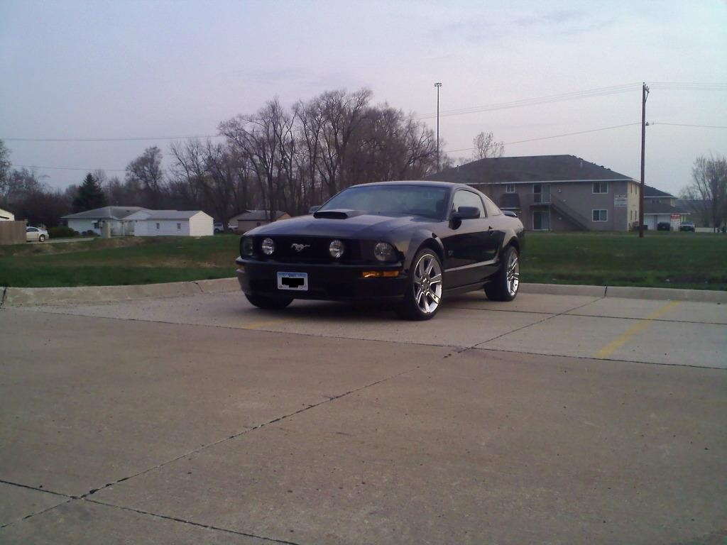 Another lilchawler 2007 Ford Mustang post... - 14944816