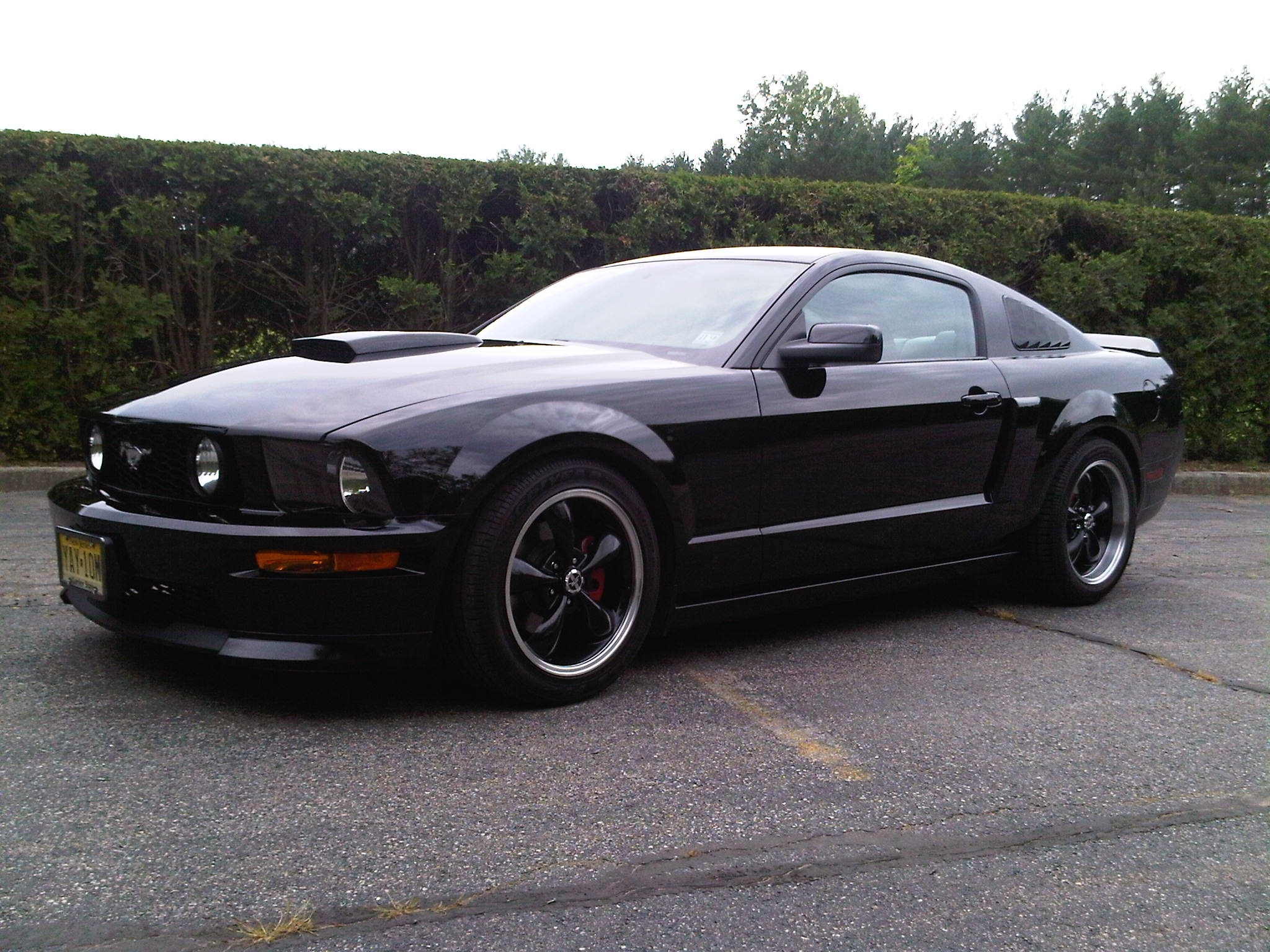 Runfeldtj 2007 Ford Mustanggt Deluxe Coupe 2d Specs
