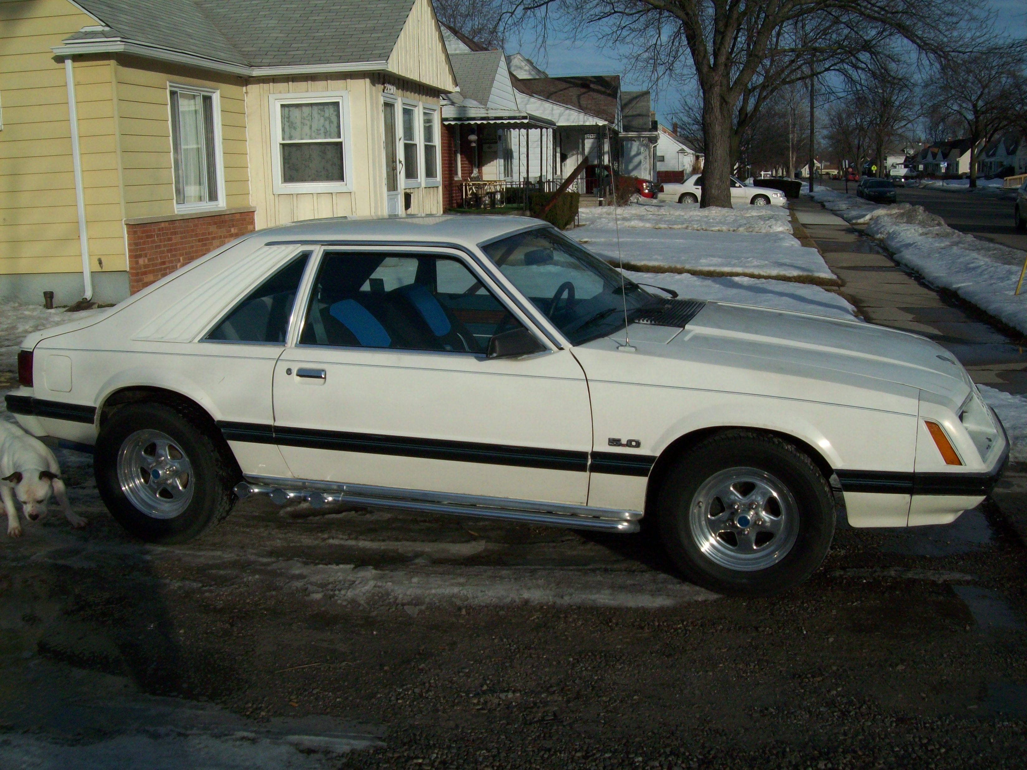 Motorcitymuscle 1981 ford mustang specs photos modification info