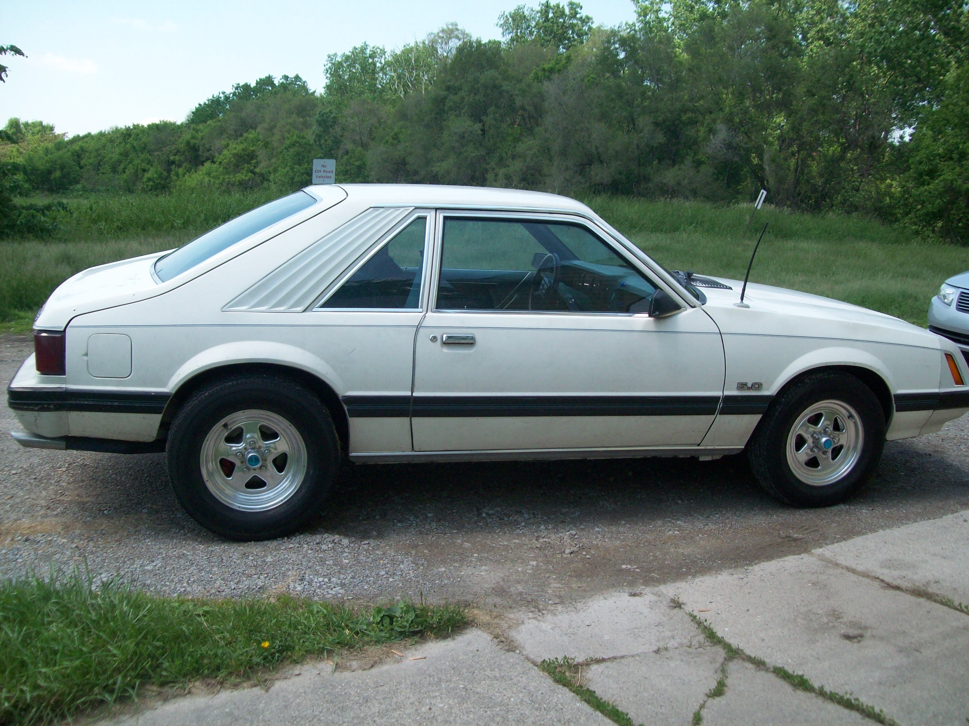 Motorcitymuscle 1981 Ford Mustang Specs Photos