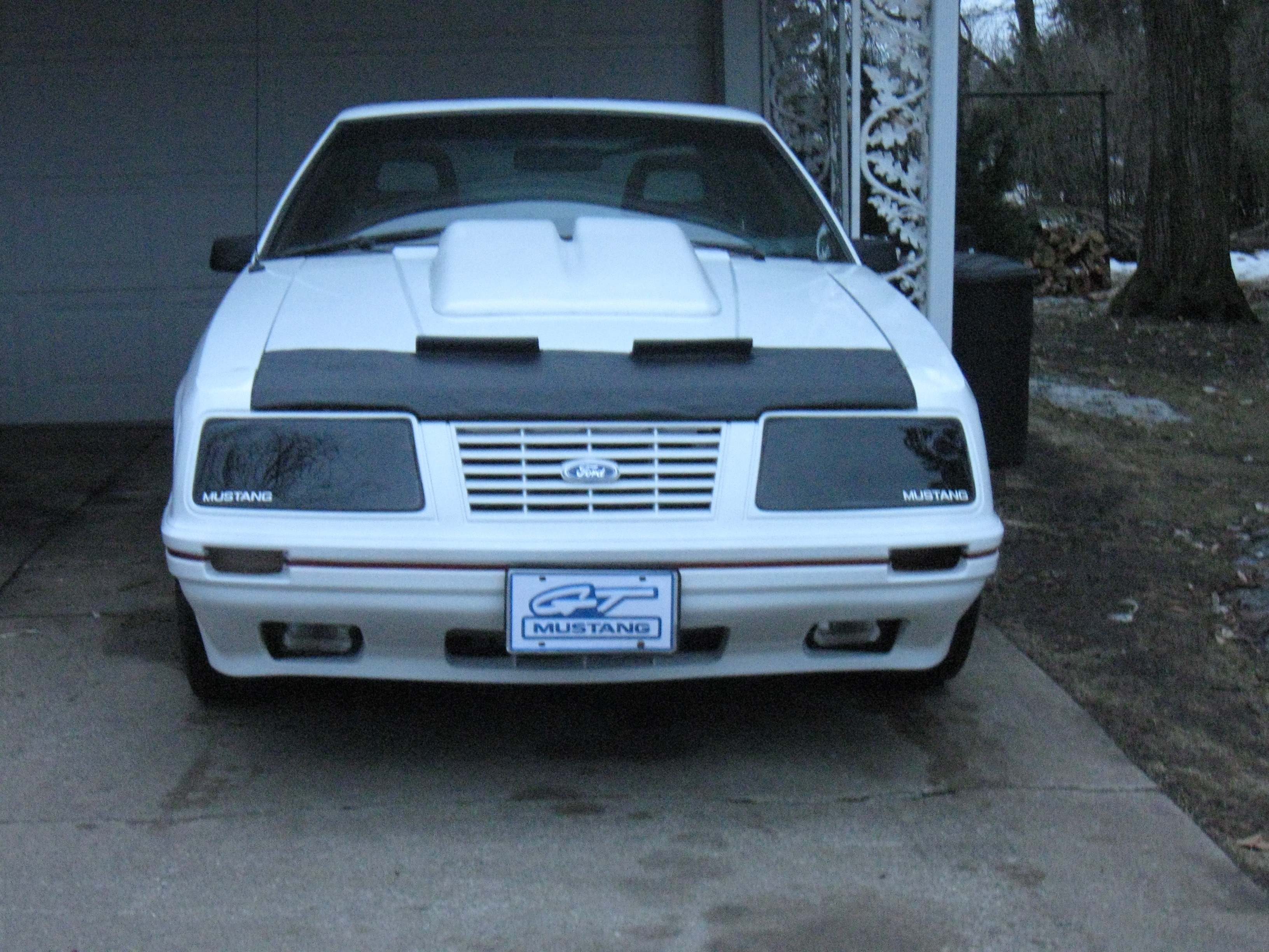 Another GT350turbo 1984 Ford Mustang post... - 15001244