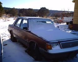 redneckf3501988 1987 Plymouth Reliant