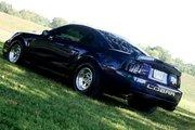 Another mystic04snake 2004 Ford Mustang post... - 15010940
