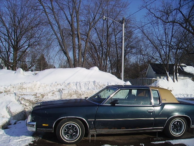 Another gbodycutty80 1980 Oldsmobile Cutlass Calais post... - 15019348