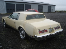 tobbiogeddis 1979 Buick Riviera 