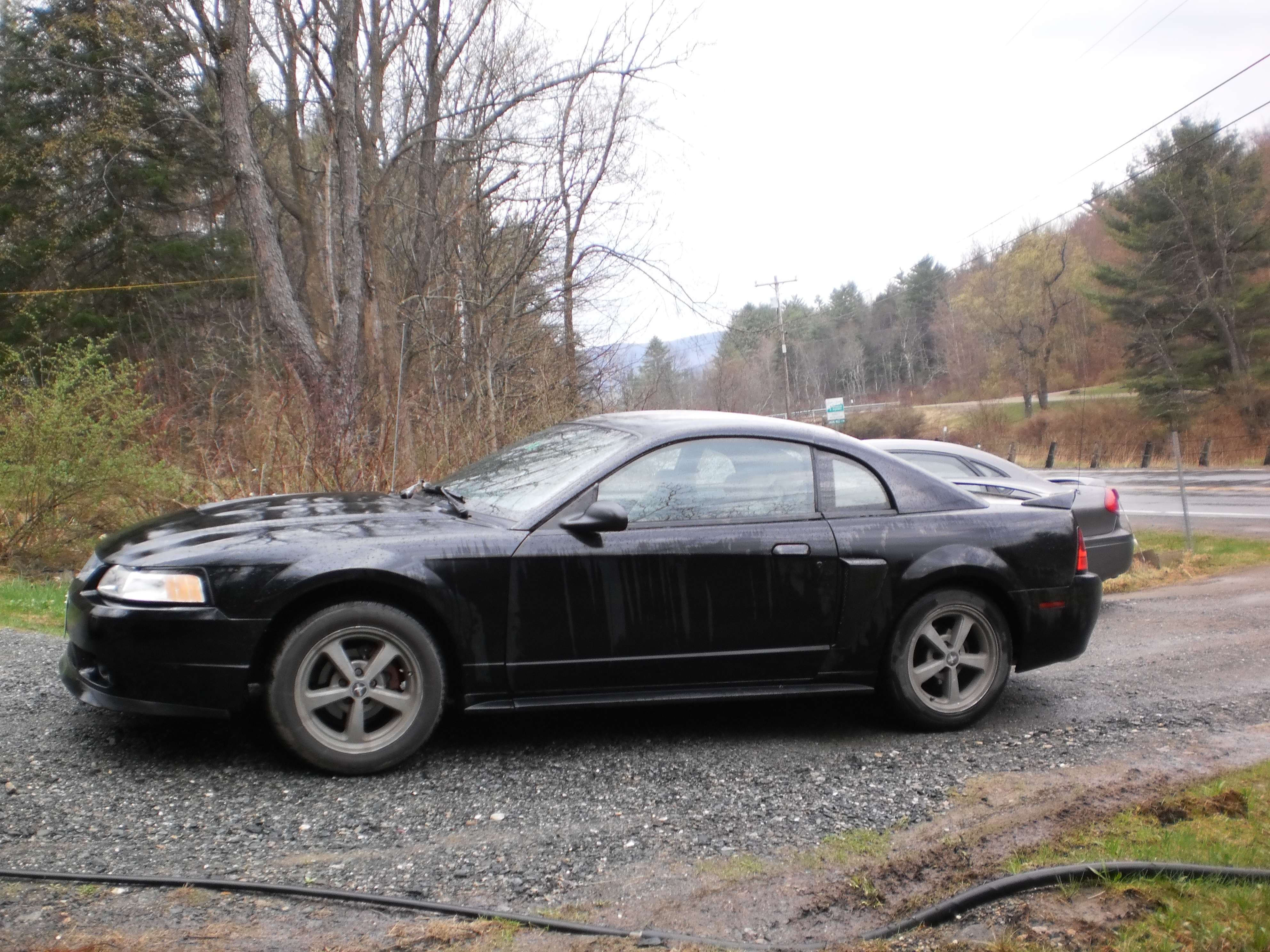 Another fiero5 2000 Ford Mustang post... - 15034006