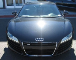daliajones63s 2010 Audi R8