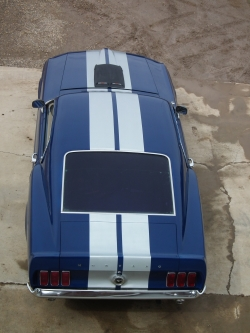 weewees 1969 Ford Mustang