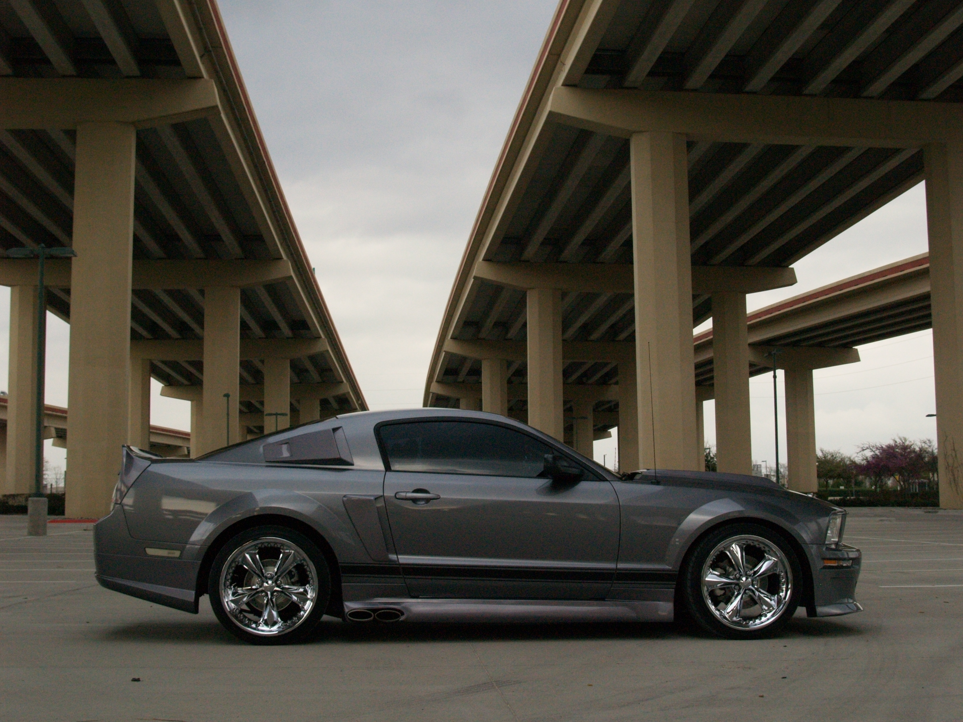 Another oifundertaker 2006 Ford Mustang post... - 15041490